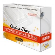 Caviar Box Europeo Desmontable